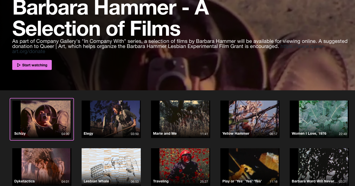 Screengrab showing a gallery of 10 thumbnail images from films by Barbara Hammer.