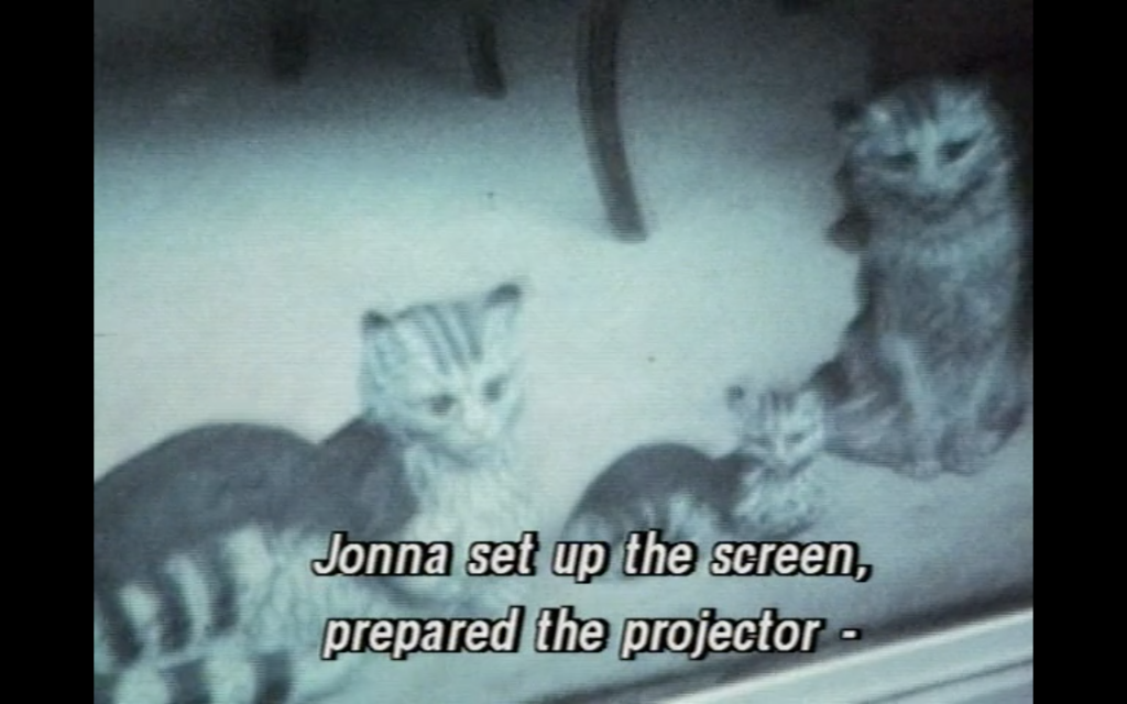 """The image is a colour still from Travels with Tove, showing a black and white television image being filmed. There are three tabby kittens in the image, which is at a slight diagonal to the camera, and the subtitle reads """"Jonna set up the screen, prepared the projector"""""""