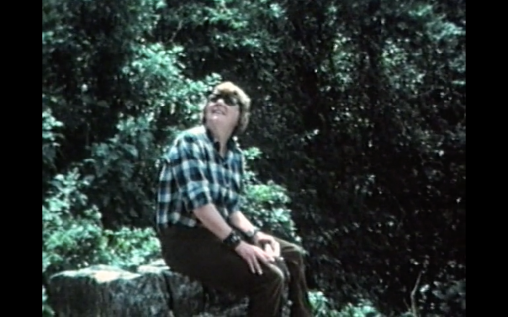 The image is a colour screenshot from the film Travels with Tove. It shows Tuulikki Pietilä sitting on a rock amid trees in a forest. She is a white woman with a bowl haircut. She is wearing sunglasses, a green plaid shirt and brown trousers, and she is looking up into the trees.